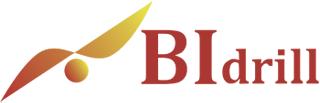 BIdrill logo
